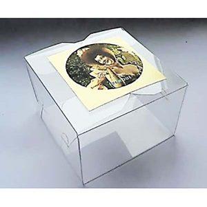 Коробка пластиковая №6