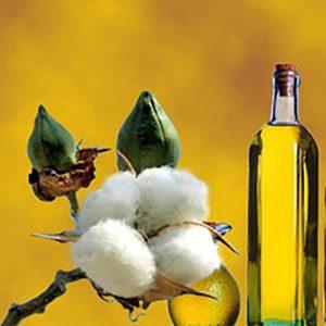 Масло хлопковых семян (рафинированное)