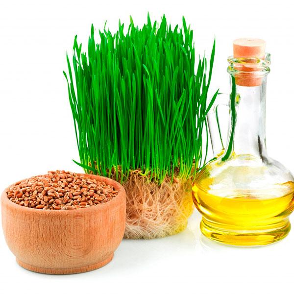 Масло зародышей пшеницы (нерафинированное)