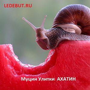Муцин улитки Ахатин (NEW!!!) mucin-ulitki