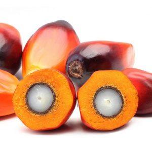 Пальмоядровое масло (рафинированное)