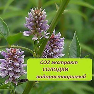 СОЛОДКА - СО2 экстракт